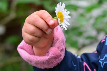 Fingerspiele zu verschiedenen Anlässen