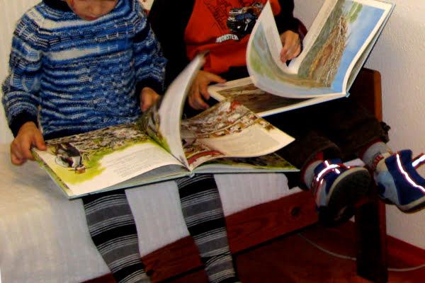 Ein eigener Leseraum – hier macht Lesen Spaß