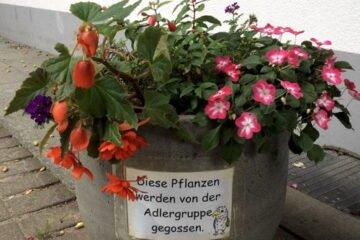 Blumen-giessen.jpg